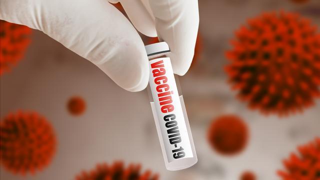 วัคซีนใบยาฝีมือคนไทย สู้โควิด-19 ทุกสายพันธุ์