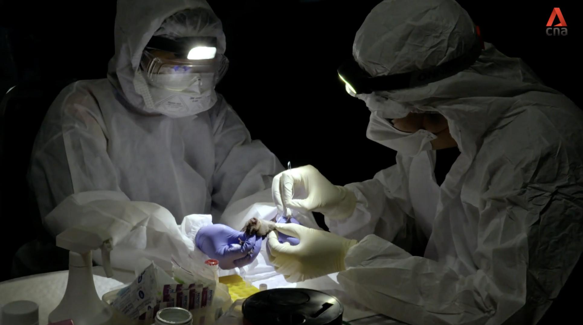 Ep 1: Disease Hunters: The Viral Menace